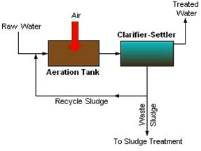 Activated Sludge Process | IWA Publishing
