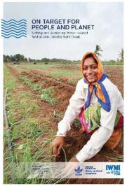 On Target for People and Planet: Setting and Achieving Water-Related Sustainable Development Goals