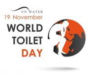 World Toilet Day article collection: free access for limited time