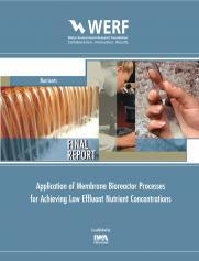 Application of Membrane Bioreactor Processes for Achieving Low Effluent Nutrient Concentrations