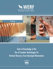 State of Knowledge of the Use of Sorption Technologies for Nutrient Recovery from Municipal Wastewaters Nutrients
