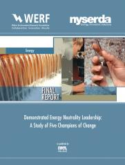 Demonstrated Energy Neutrality Leadership: A Study of Five Champions of Change