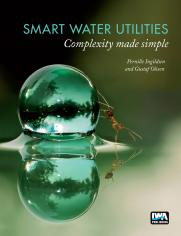 Smart Water Utilities: Complexity Made Simple
