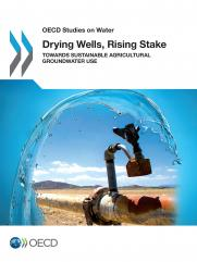 Drying Wells, Rising Stakes – Towards Sustainable Agricultural Groundwater Use