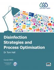 Disinfection Strategies and Process Optimisation