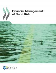 Financial Management of Flood Risks