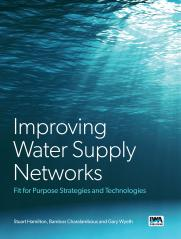 Improving Water Supply Networks: Fit for Purpose Strategies and Technologies