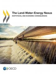 The Land-Water-Energy Nexus: Biophysical and Economic Consequences