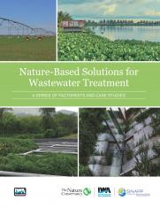 Nature Based Solutions for Wastewater Treatment